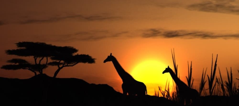 Destinos exóticos y baratos sudáfrica