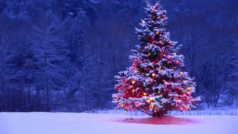 destinos para disfrutar la navidad