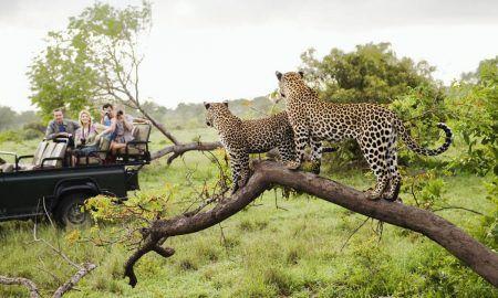 destinos para amantes de los animales