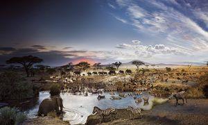 Parque Nacional Serengeti, el más destacado de Tanzania