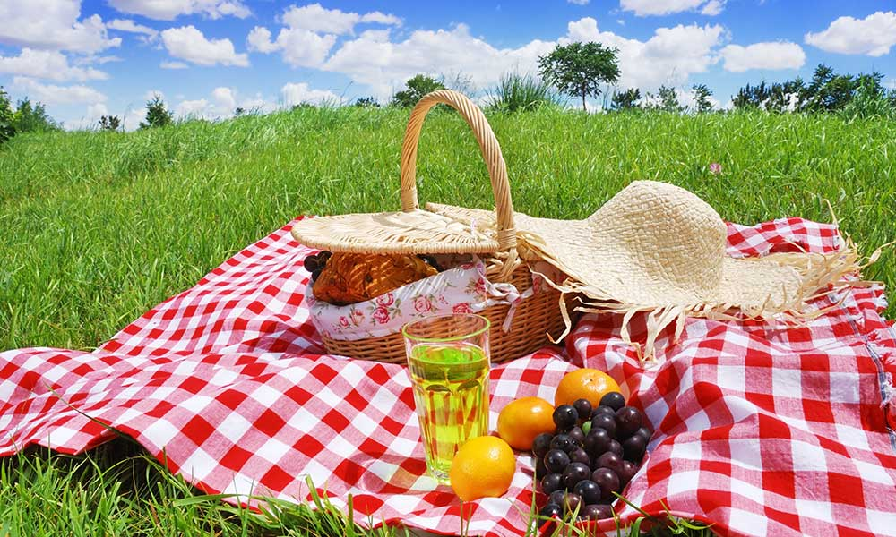 Mejores sitios de picnic en Madrid