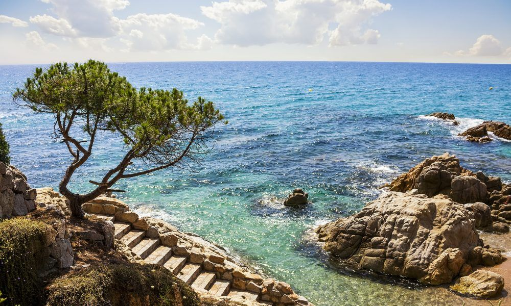 Sant jordi en playa de aro