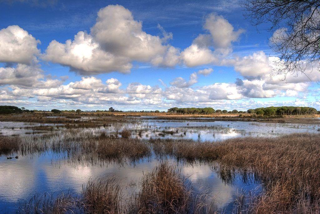 Huelva parque nacional de Doñana