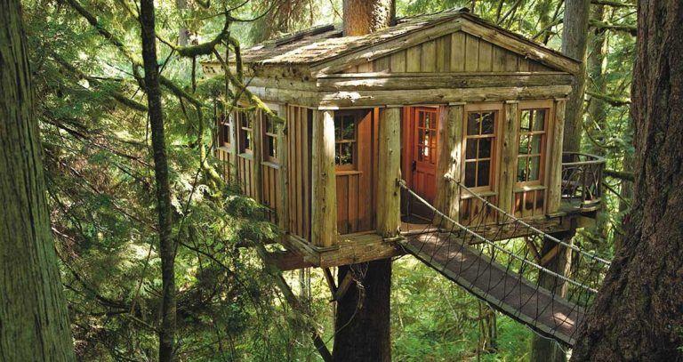 hoteles con cabañas en los árboles