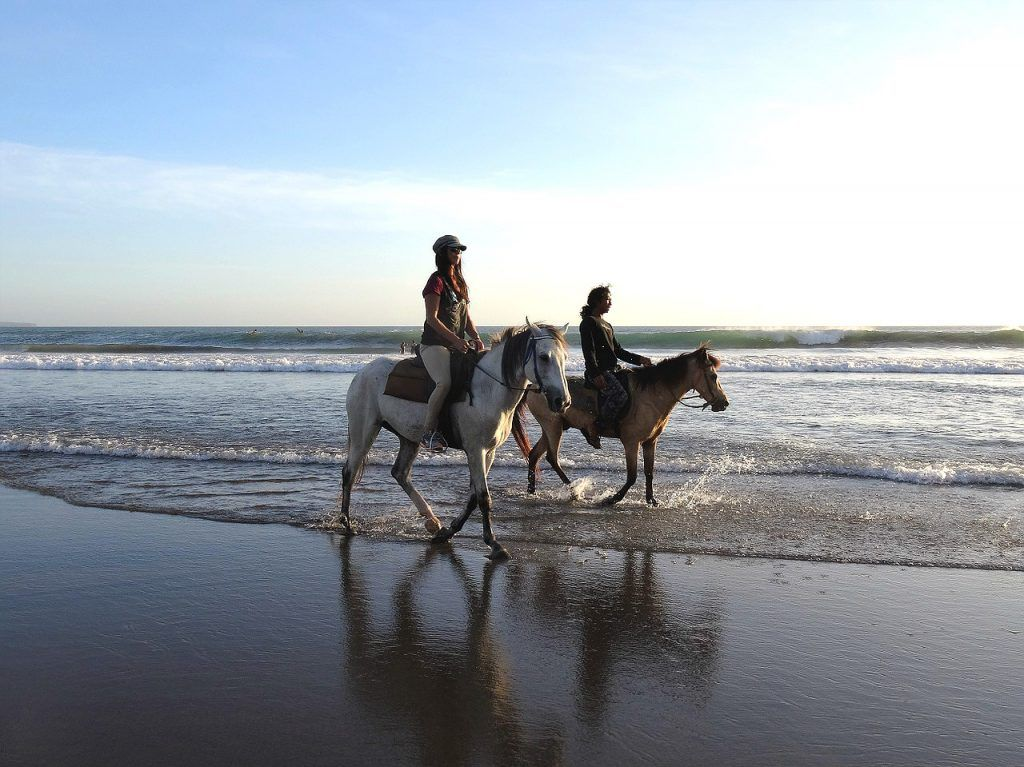 Paseo caballo por playas de Tarifa