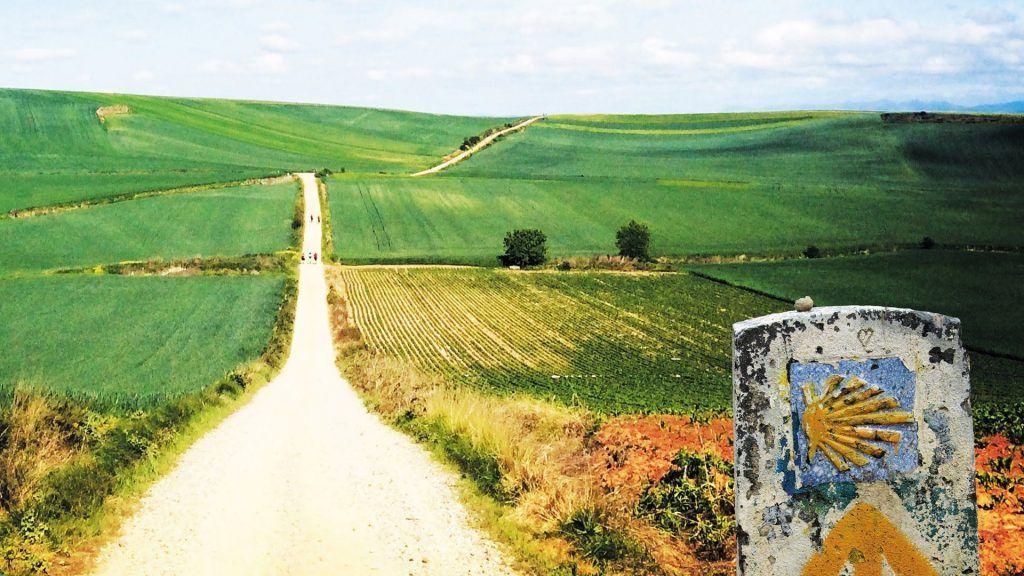 camino de santiego