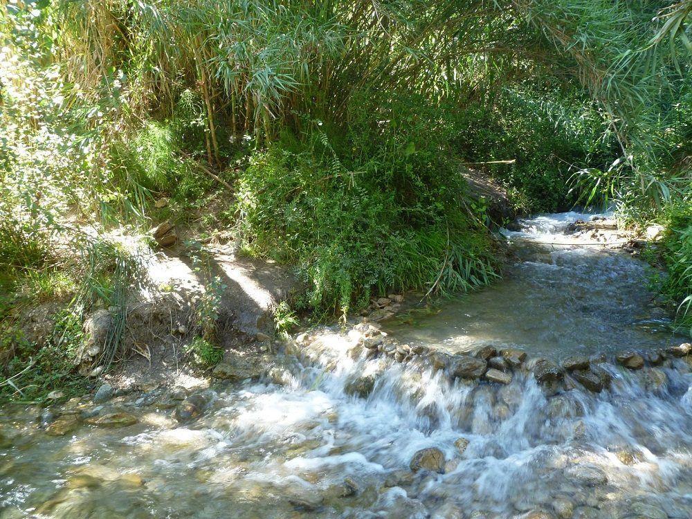 Baño Chico