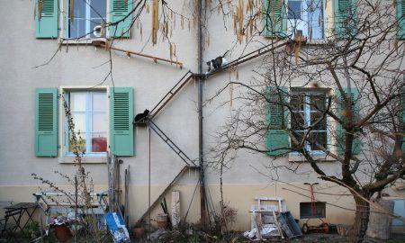 Escaleras para gatos de Berna