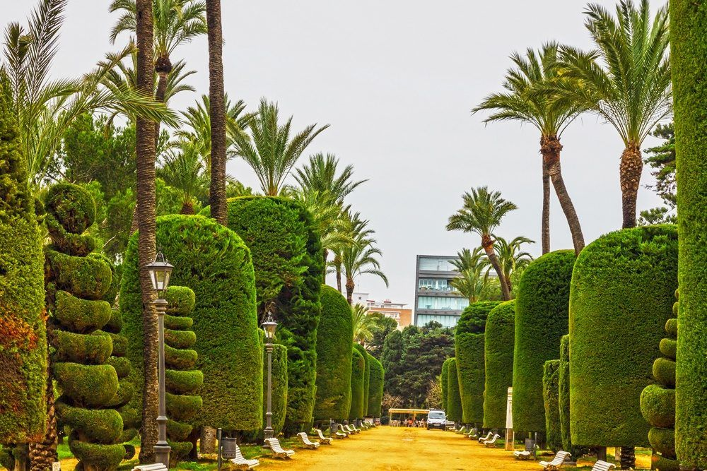 Parque Genovés en Cadiz