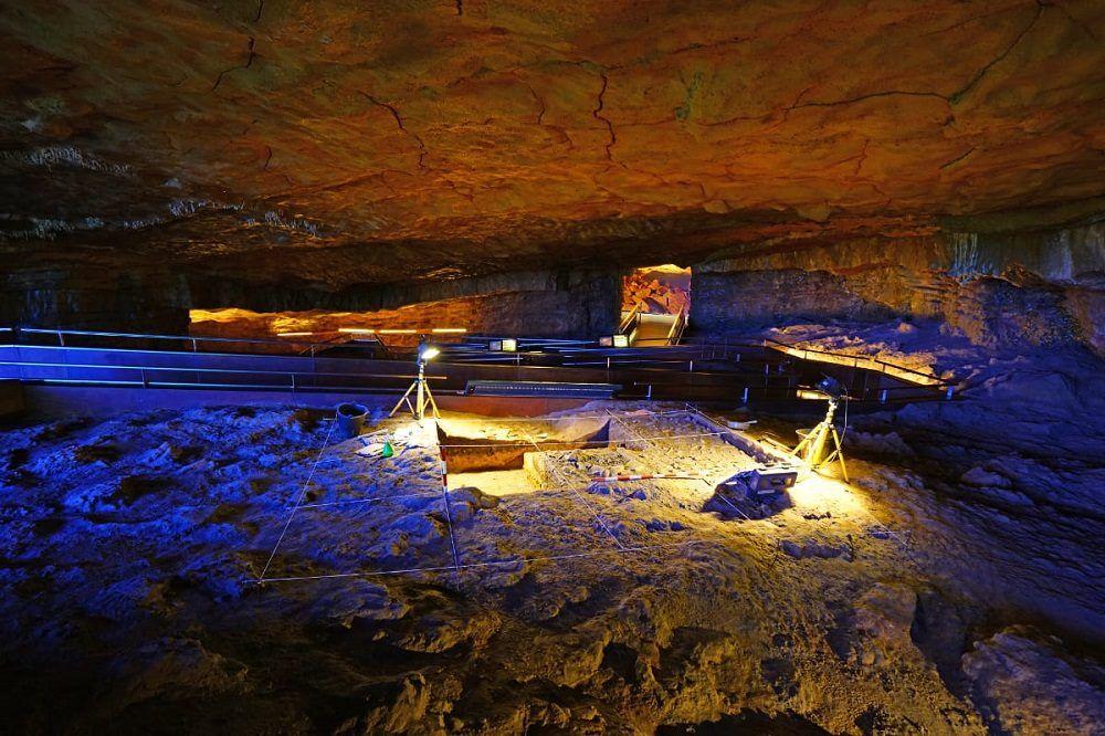 cueva de altamira visita