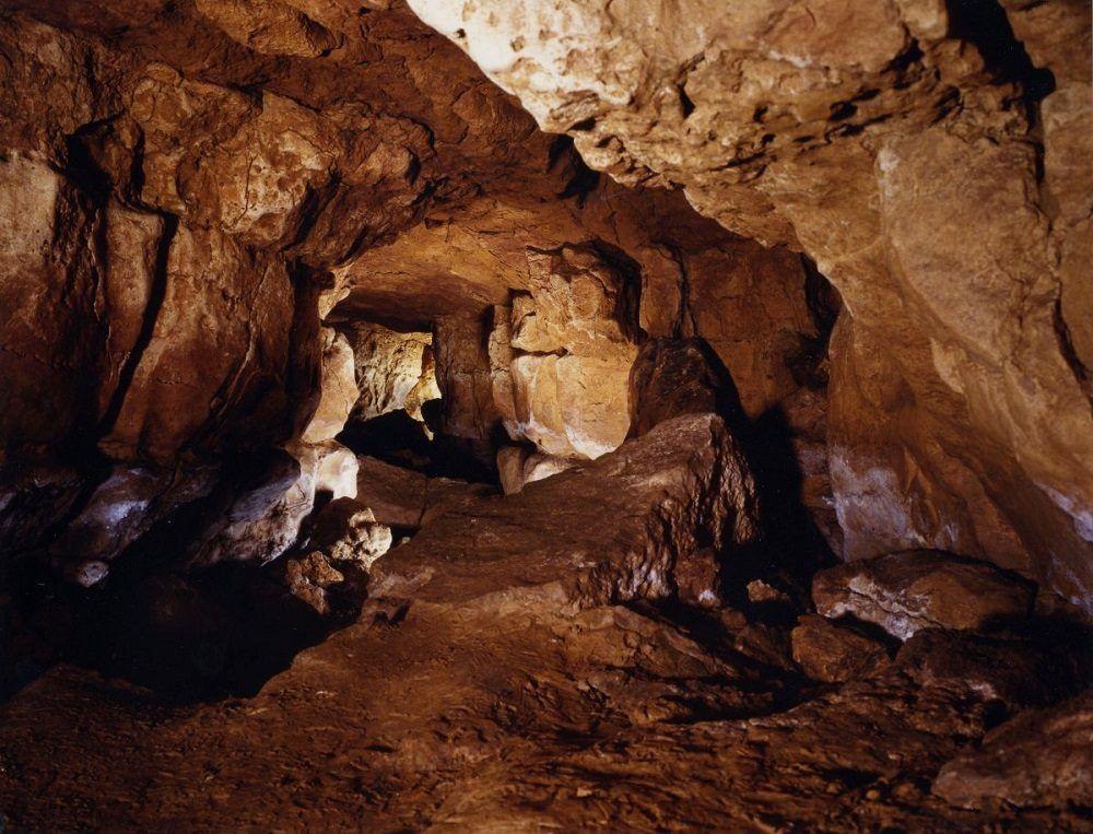 interior cueva de altamira