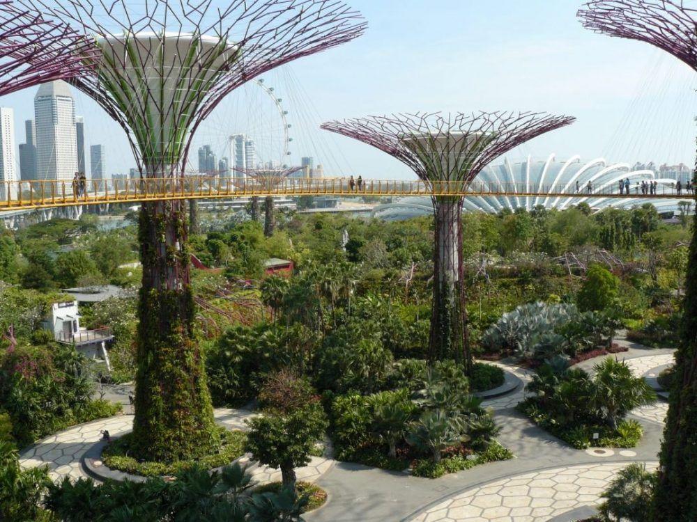 Jardines botánicos de Singapur