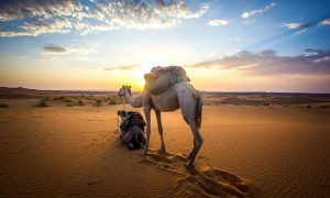 Viajar a Marruecos: todo lo que tienes que saber antes de hacerlo