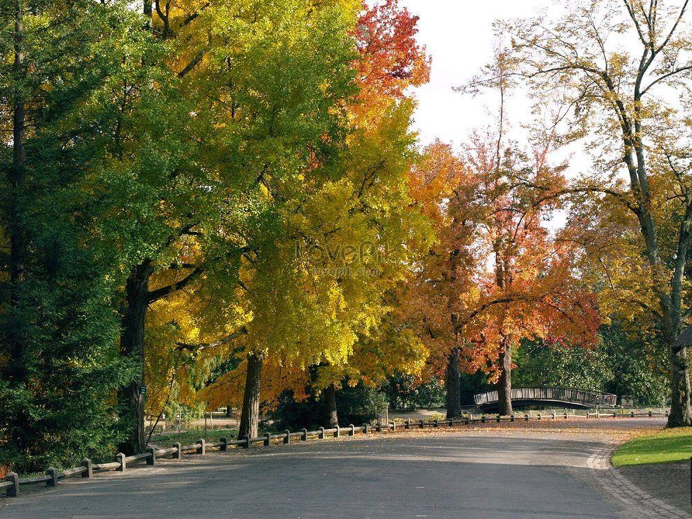 El Parc Bordelaise