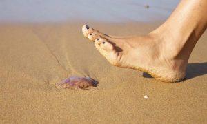 Trucos útiles para evitar las picaduras de las medusas en la playa