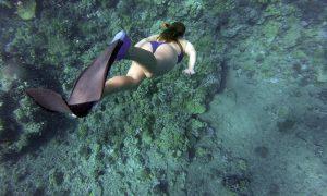 Lugares para hacer snorkel de España