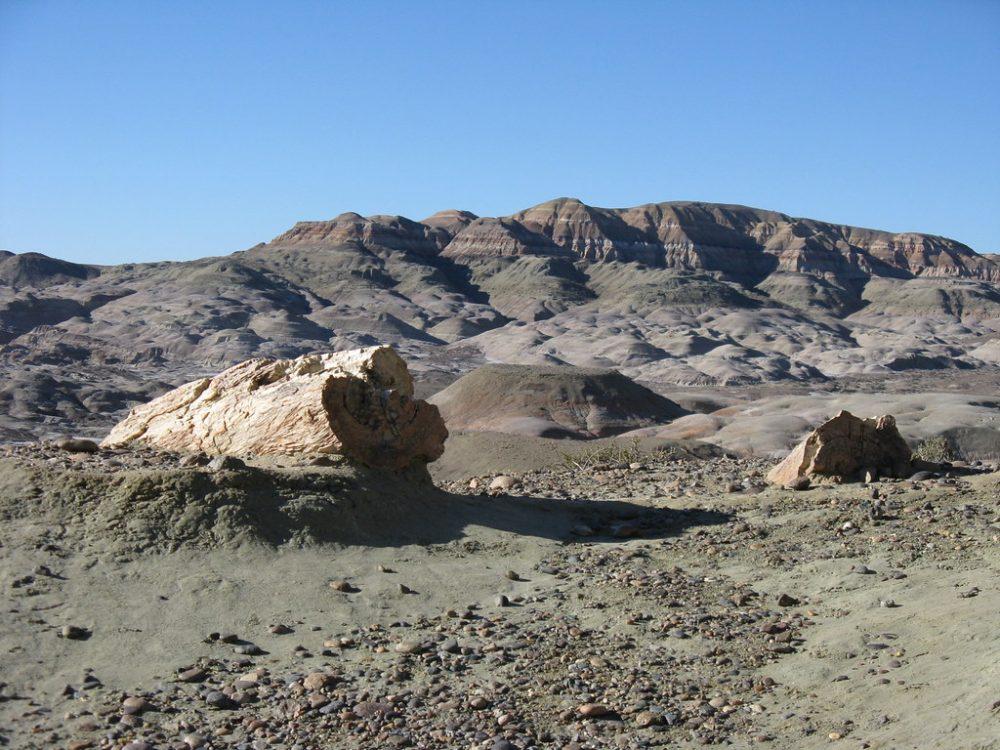 Paisajes y lugares para viajar a la luna - Parque Nacional Bosques Petrificados