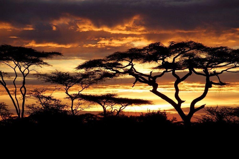 atardecer en tanzania