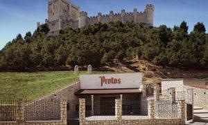 Ruta por las mejores bodegas de la Ribera del Duero y sus vinos