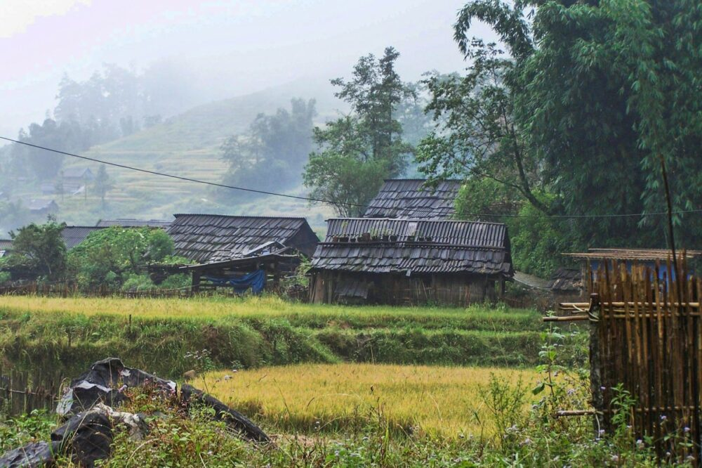El interior rural recuerda a películas como Apocalypsis Now