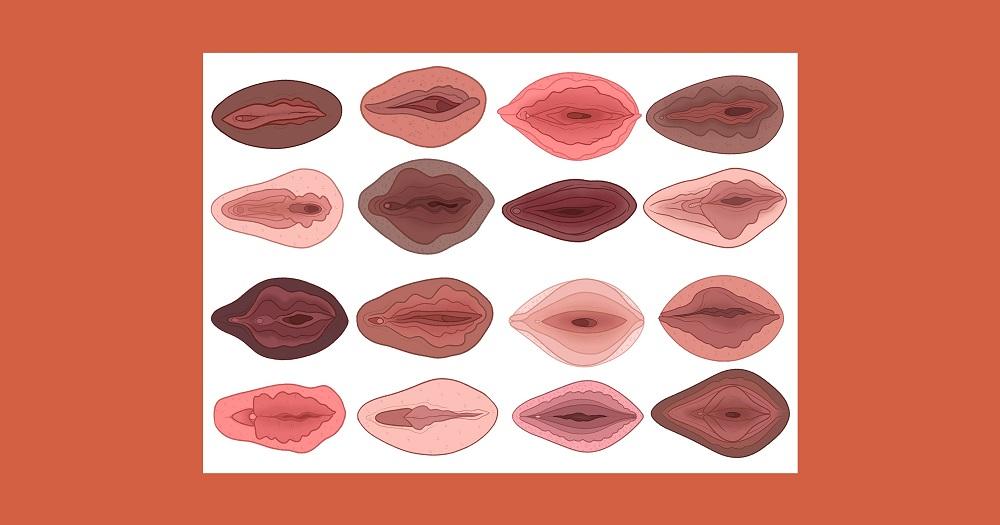 Londres tiene un museo dedicado a la vagina