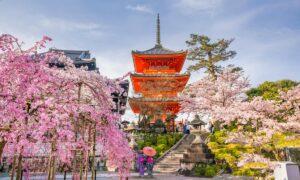 Consejos a tener en cuenta si quieres hacer turismo en Tokio